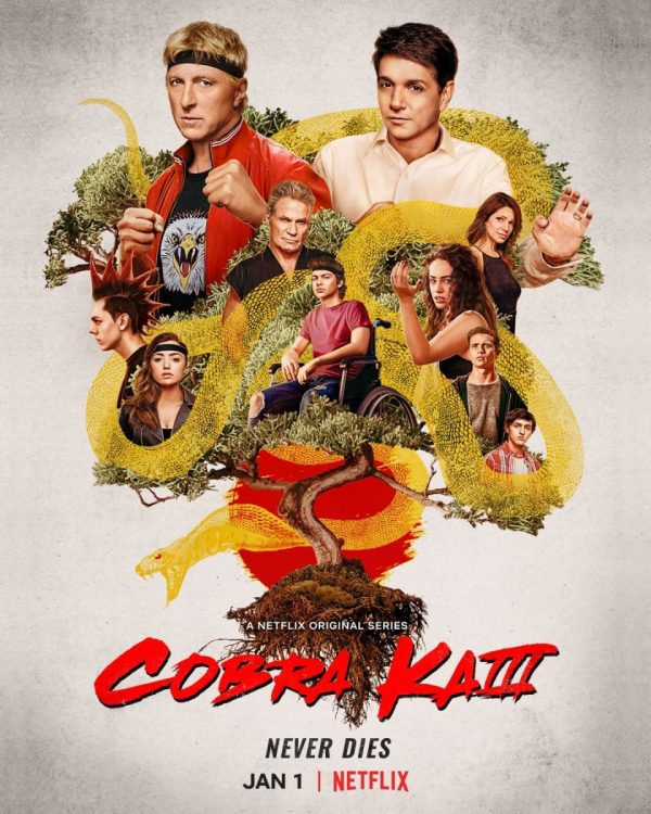 Cobra Kai Season 3 (2021)